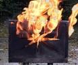 Monitor Fire