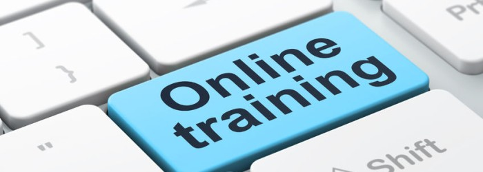 New Service Launched - Online Training